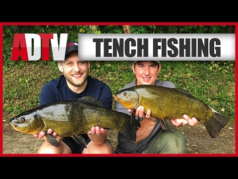 How To Catch Tench - Tench Fishing Tips