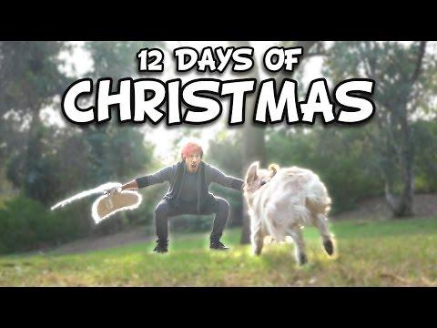 Markiplier's 12 Days of Christmas