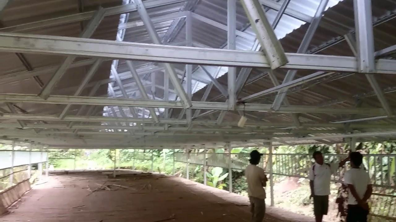Kontruksi Kandang broiler baja ringan - YouTube