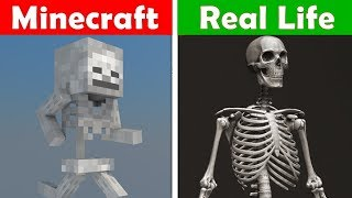 MINECRAFT SKELETON IN REAL LIFE! Minecraft vs Real Life animation CHALLENGE