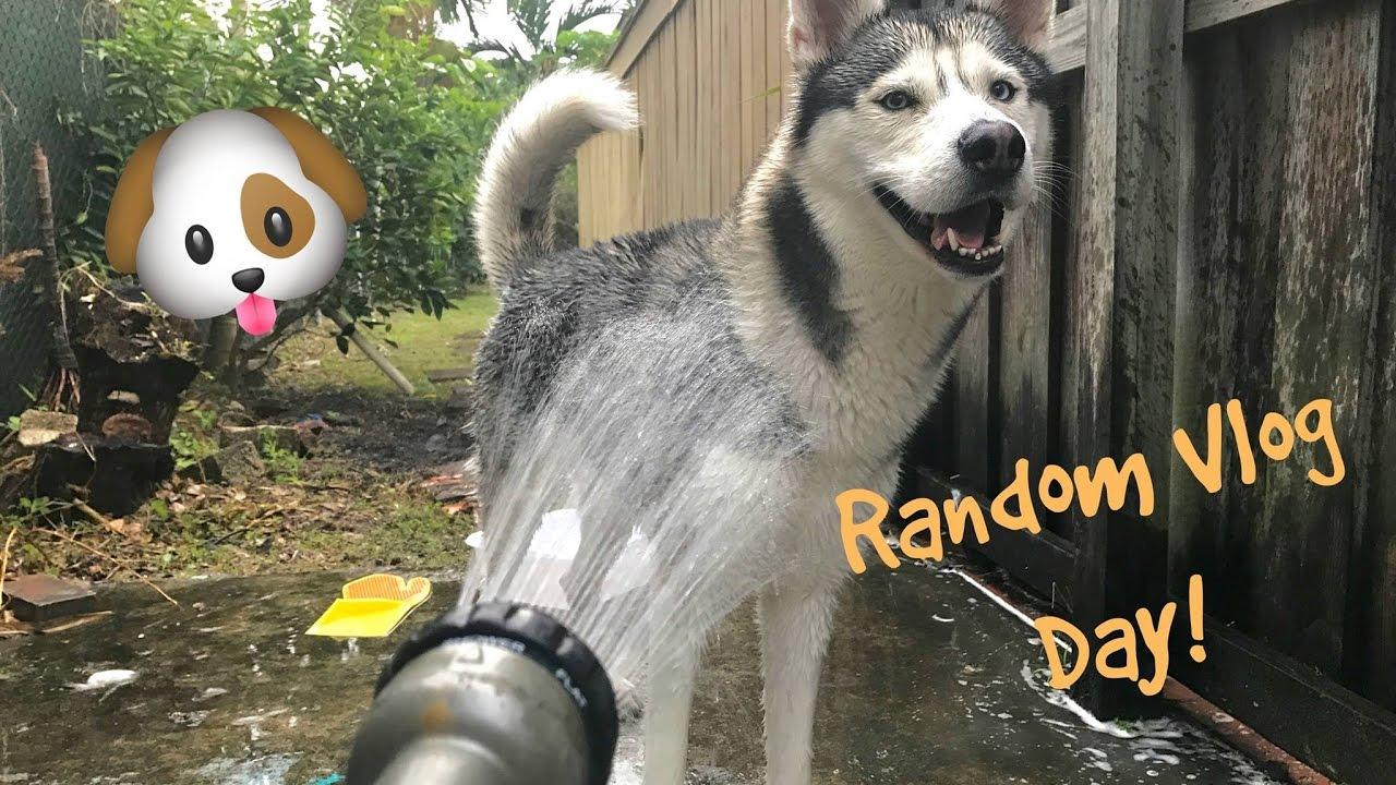 Park Day, Shower Time & More! - Random Vlog Day! #2