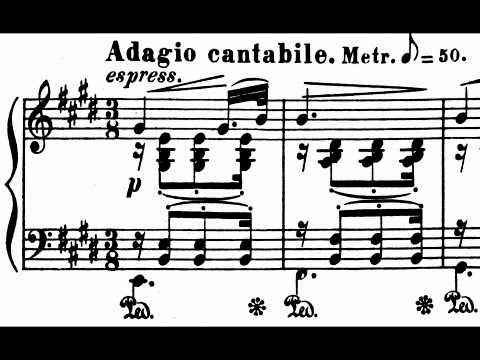 STRAUSS (Richard) Sonata in B minor op. 5 Klaviersonate h-Moll Tibor Szász (1990 April 7 complete)
