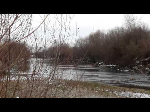 cam hunt in olt river romania 2