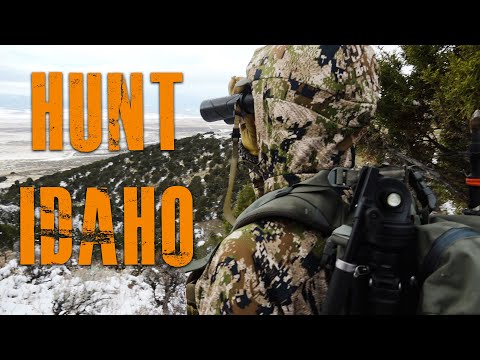 How To Hunt Idaho (For Elk, Deer, And Antelope)