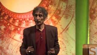 Gabor Maté, When The Body Says No: Mind/Body Unity and the Stress- Disease Connection