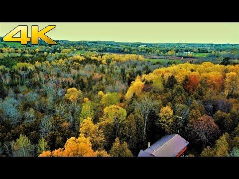 Quick Nature Trail Walk   4k (Ultra HD)