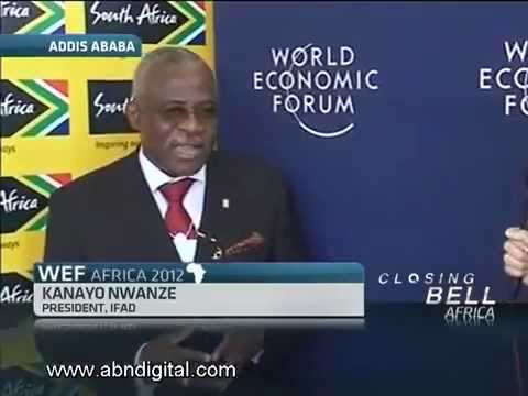 Growth Green Agriculture (GG Agriculture) - Nwanze discusses agri investment