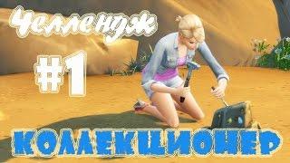 "The Sims 4/Челлендж ""Коллекционер""#1"