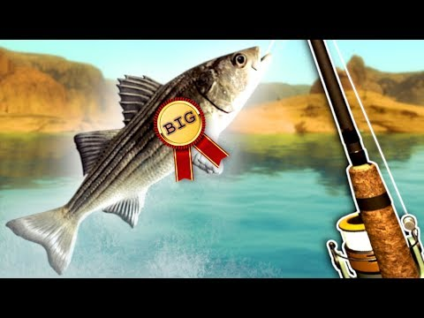 I Try to Win A Fishing Tournament! - Ultimate Fishing Simulator Gameplay & Funny Moments |