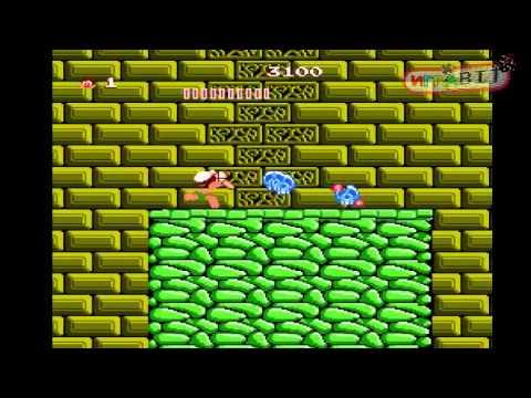 Стрим Adventure Island (NES) часть 1 из 2 прохождение