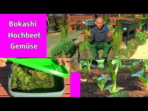 Der Bio Garten Bokashi und Hochbeete im Garten