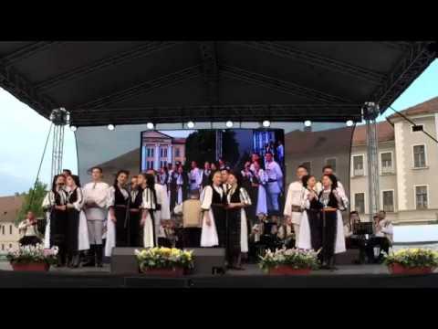 Alba24 Video: Regal