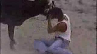 MARQUETALIA CALDAS TOROS 1996