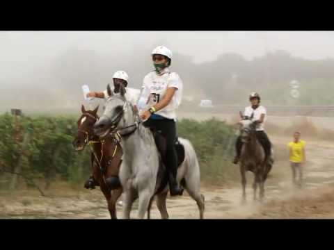 Meydan FEI European Endurance Championship for Young Riders&Juniors 2016 part 2 1