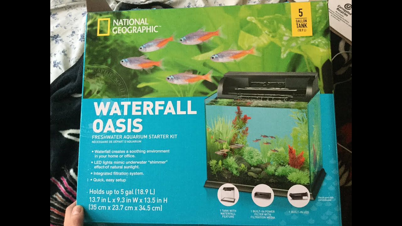 National Geographic waterfall oasis fish tank review