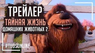 Тайная жизнь домашних животных 2 | HD Трейлер | Русская озвучка Tuos ONline