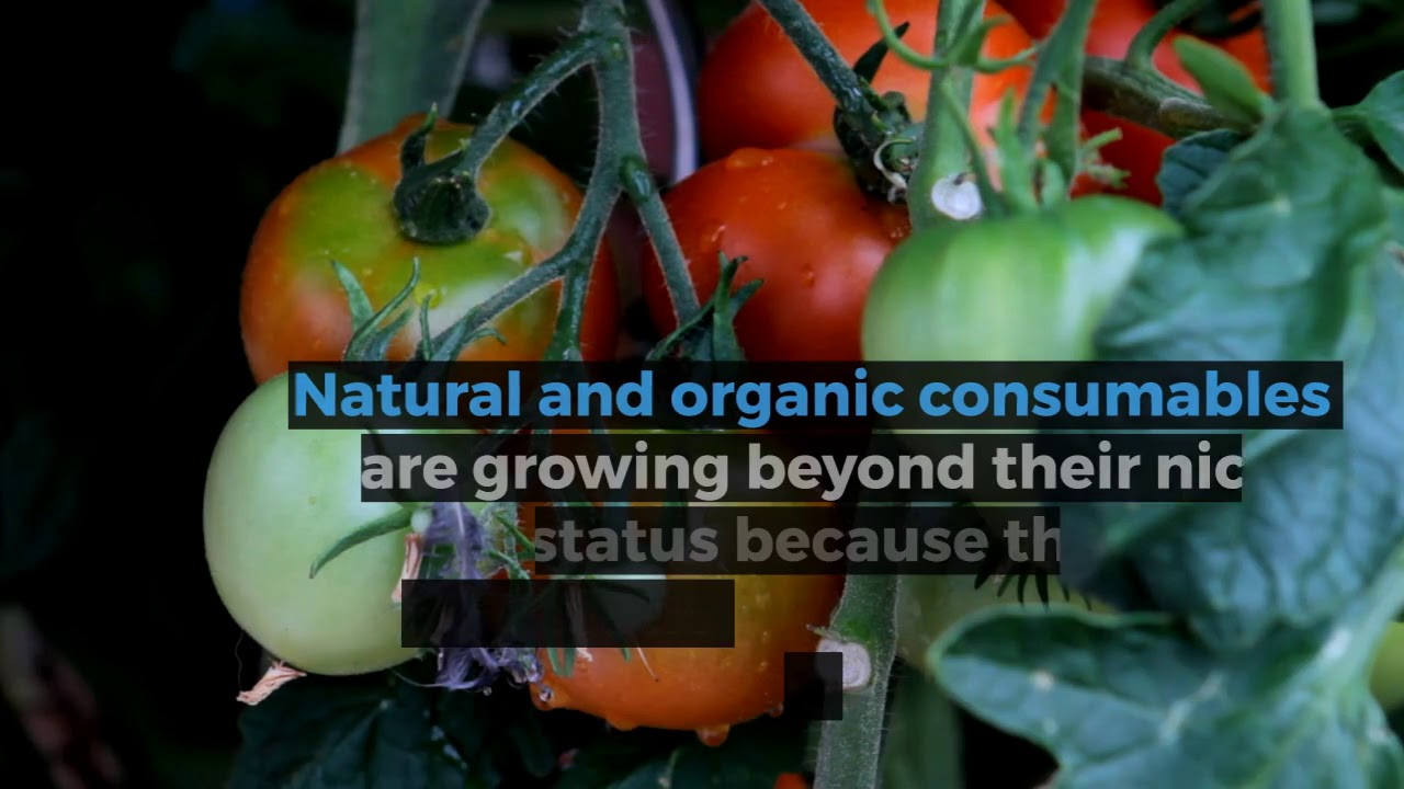 Lawn & Garden Consumables: Consumer Insights - YouTube