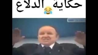 Dz بوتفليقة و الدلاع ههههه فقط في الجزائر