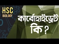 ০৬৭) What is Carbohydrate? (কার্বোহাইড্রেট কি) [HSC | Admission]