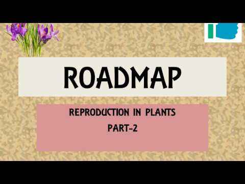 REPRODUCTION IN PLANTS PART 2