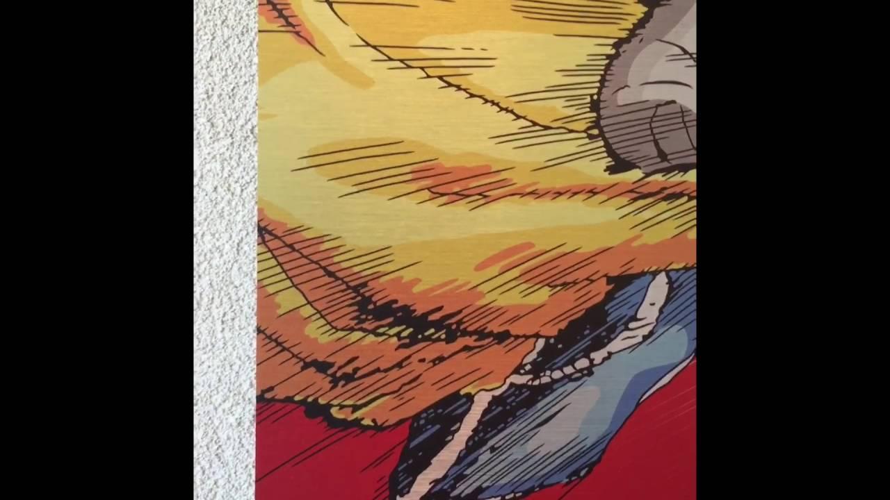Dragon Ball Z Goku Limited Edition wall deco mural 3mm dibond ...