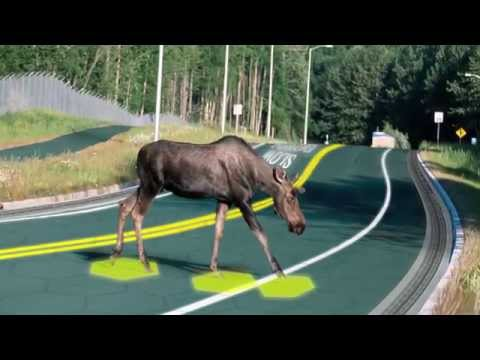 The Crazy Genius Behind Solar Roadways