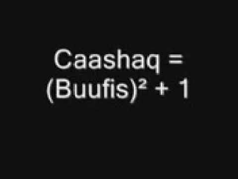 Caashaq waa maxay