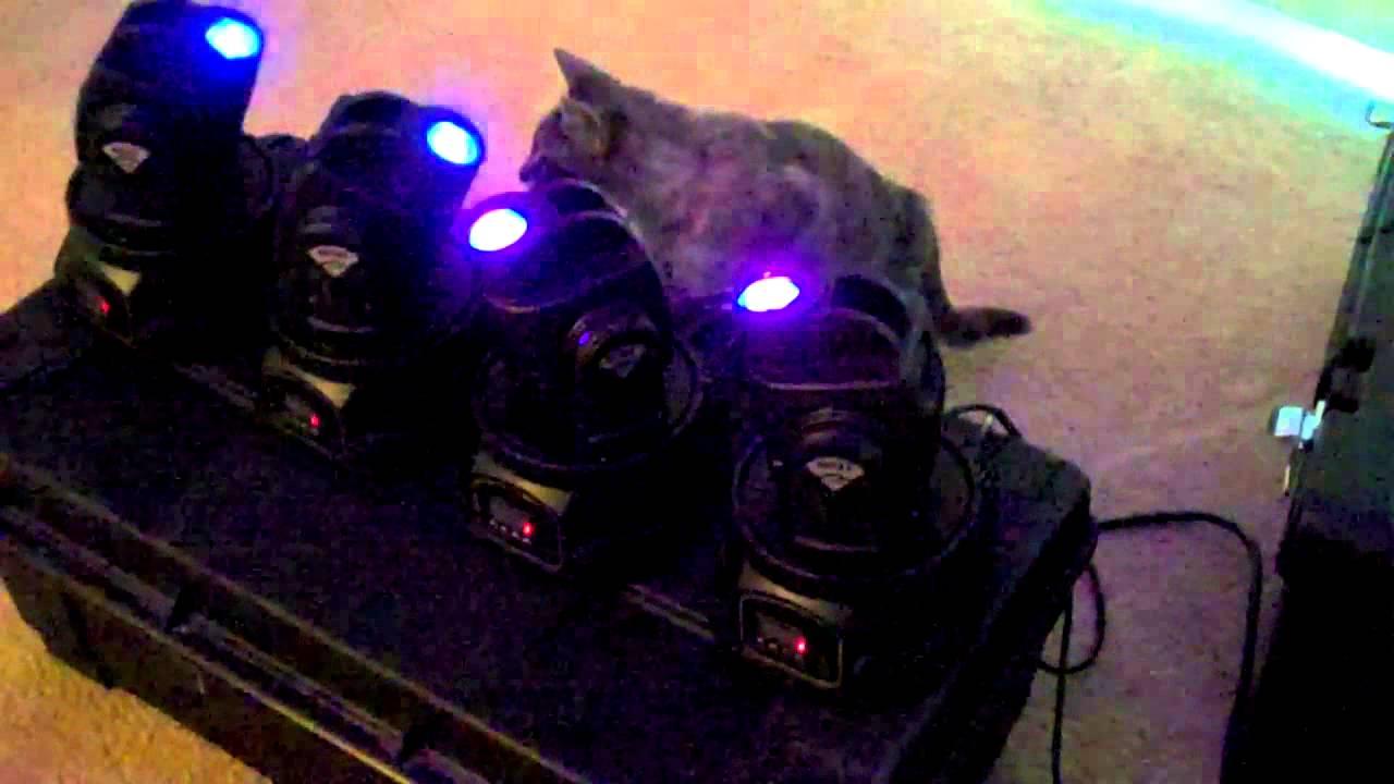 Mini spot 15w led moving heads for sale youtube - Mini spot led encastrable exterieur ...