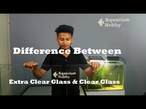 Difference Between Extra Clear Glass & Normal Glass