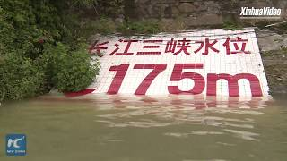 China's Three Gorges Dam hits full capacity