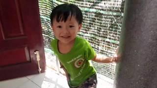 Trò Chơi Trốn Tìm ❤ Baby Play Hide And Seek ❤ Kids Toy Media