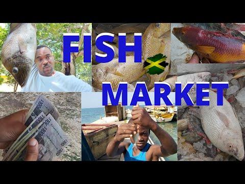 BUYING FISH | WHITE HOUSE FISH MARKET | WESTMORELAND | JAMAICA