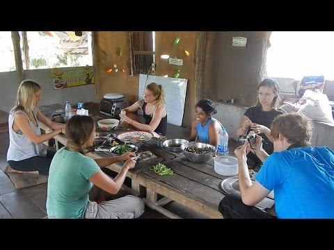The Vegan Mindful Farm (Organic Thailand)