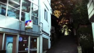 フジテレビのスペシャルドラマ 「デート~恋とはどんなものかしら~ 201...