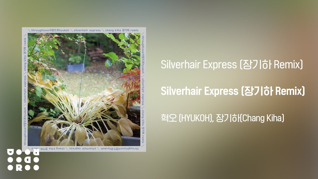 [Official Audio] HYUKOH(혁오), Chang Kiha(장기하) - Silverhair Express (장기하 Remix)