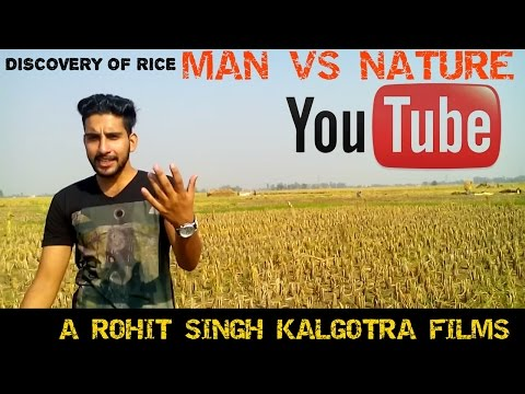 Discovery of Rice IN RS PURA JAMMU/ MAN VS NATURE/ A Rohit singh kalgotra films