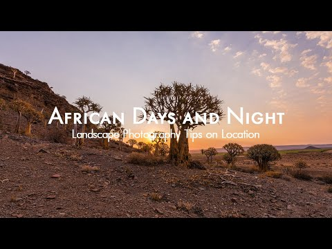 Night and Sunset Photography Tips | Quiver Tree Forest