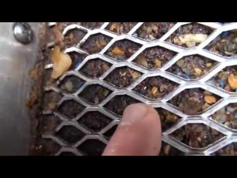 Gold Hog Mat Test - Fine Tuning the Mats