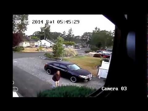 Thieves in Lakewood, WA