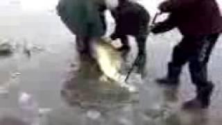 Рыбалка 2011 1(, 2014-06-28T10:41:30.000Z)