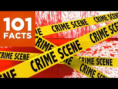 101 Facts About Crime and Punishment