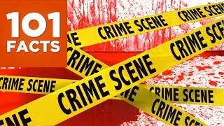 Video 101 Facts About Crime and Punishment download MP3, 3GP, MP4, WEBM, AVI, FLV Juni 2017