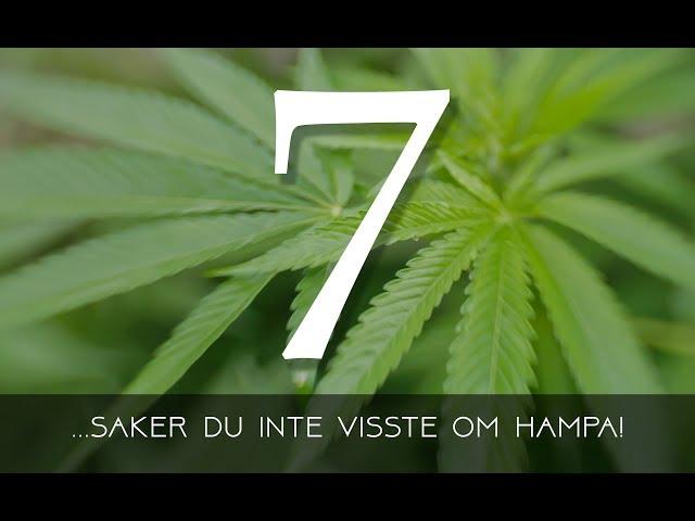 7 Saker du inte visste om Hampa!