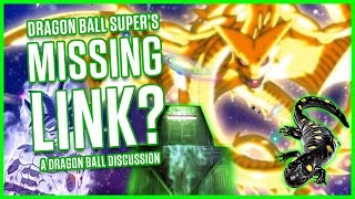 ZARAMA - DRAGON BALL SUPER'S MISSING LINK? | A Dragon Ball Disucssion