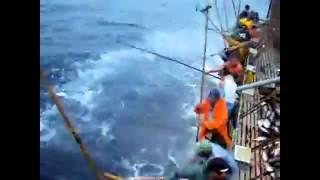 самая лучшая рыбалка(Этот ролик обработан в Видеоредакторе YouTube (https://www.youtube.com/editor), 2016-01-03T16:13:28.000Z)