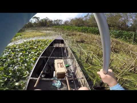 Gator-Glide canoe, shallow vegetation test G2