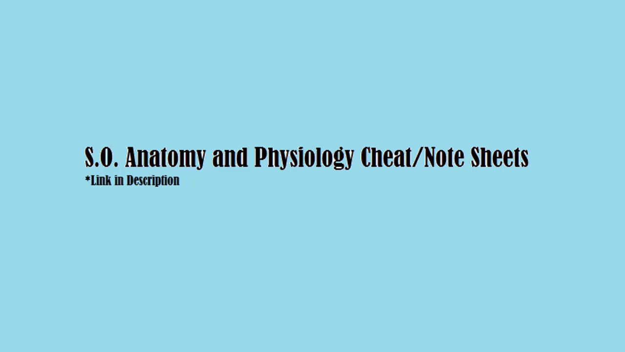 2017 Anatomy and Physiology Cheat Sheet | Nightcore(Sped-up) Mashup ...