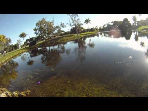 Fly Fishing The Doral Golf Course