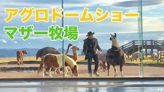 マザー牧場アグロドームショー thumbnail