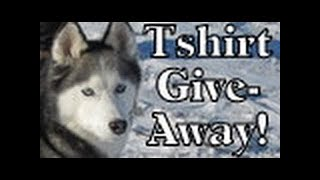 What Is A Canadian Kicksled? Siberian Husky How To Pull A Sled